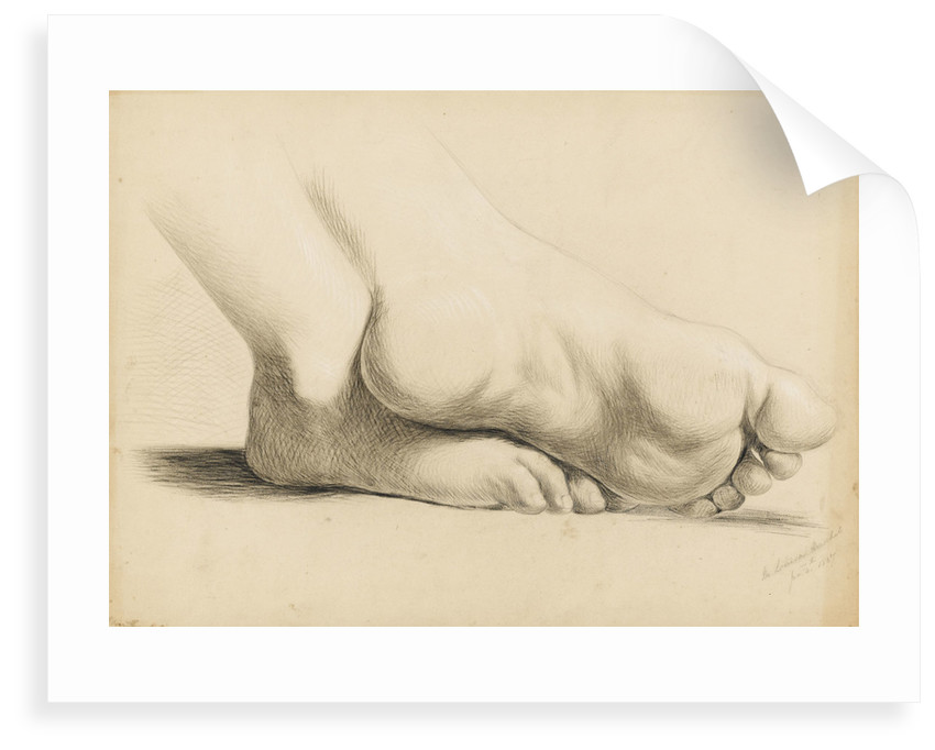Study of a pair of feet crossed at the ankles by Margaret Louisa Herschel
