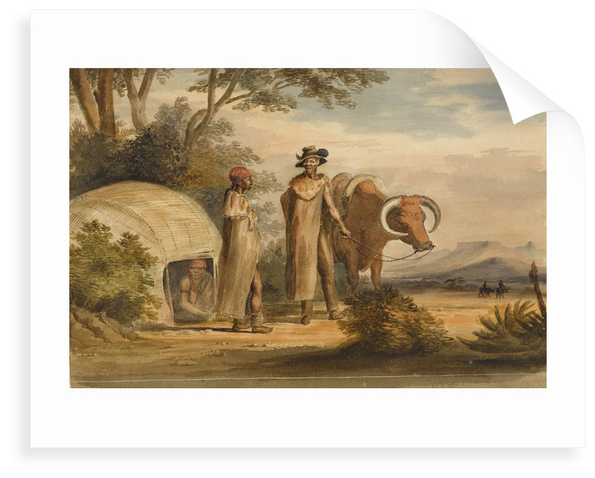 South African man and woman with an ox, a woman in a native built hut by unknown