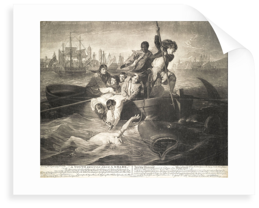 A youth rescued from a shark by John Singleton Copley