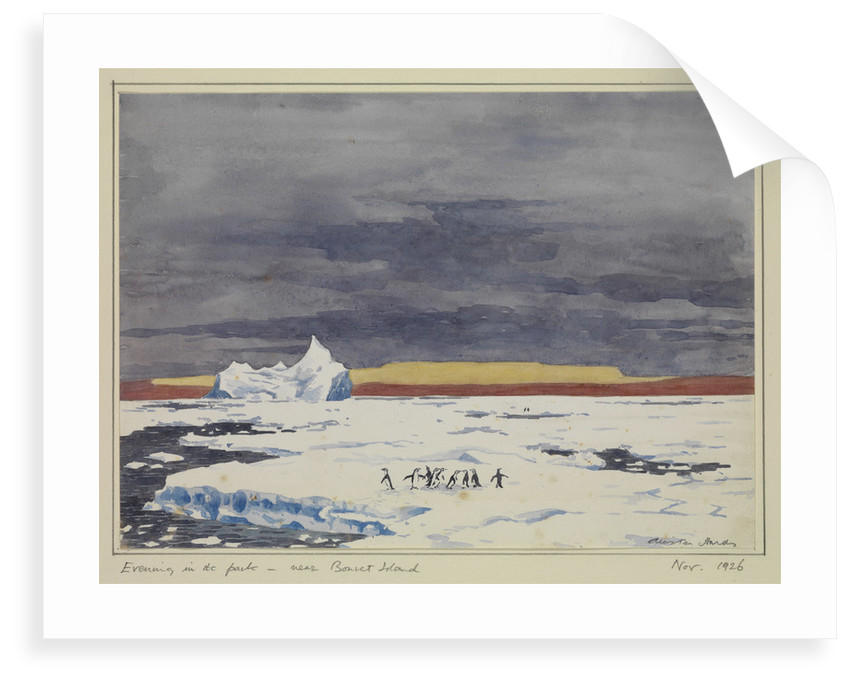 Evening in the pack - near Bouvet Island, Nov 1926 by Sir Alister Hardy