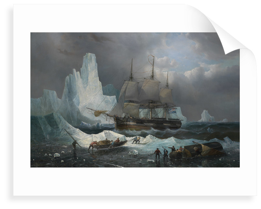 HMS 'Erebus' in the Ice, 1846 by Francois Etienne Musin