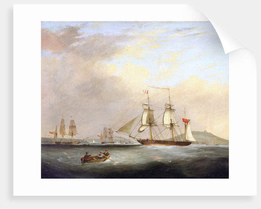 HMP Brig 'Sheldrake', Lt Passingham entering Falmouth harbour by Nicolas Matthew Condy
