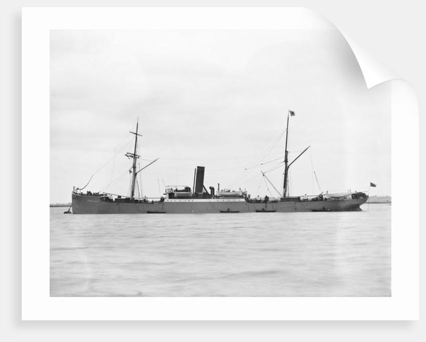 Cargo steamer 'Gulf of Venice' (Br, 1883), Greenock S S Co Ltd by unknown