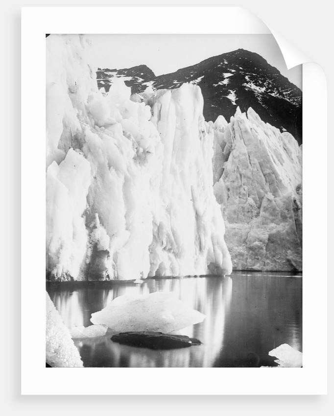 The snout of Hamberg Glacier, Moraine Fjord, South Georgia by unknown