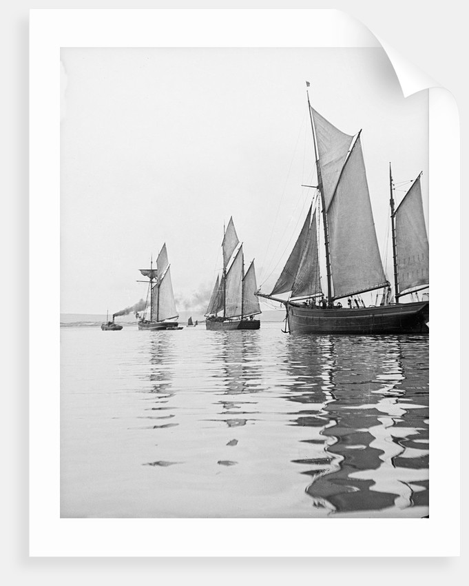 A tug and sailing vessels on the River Torridge off Appledore in Devon by unknown