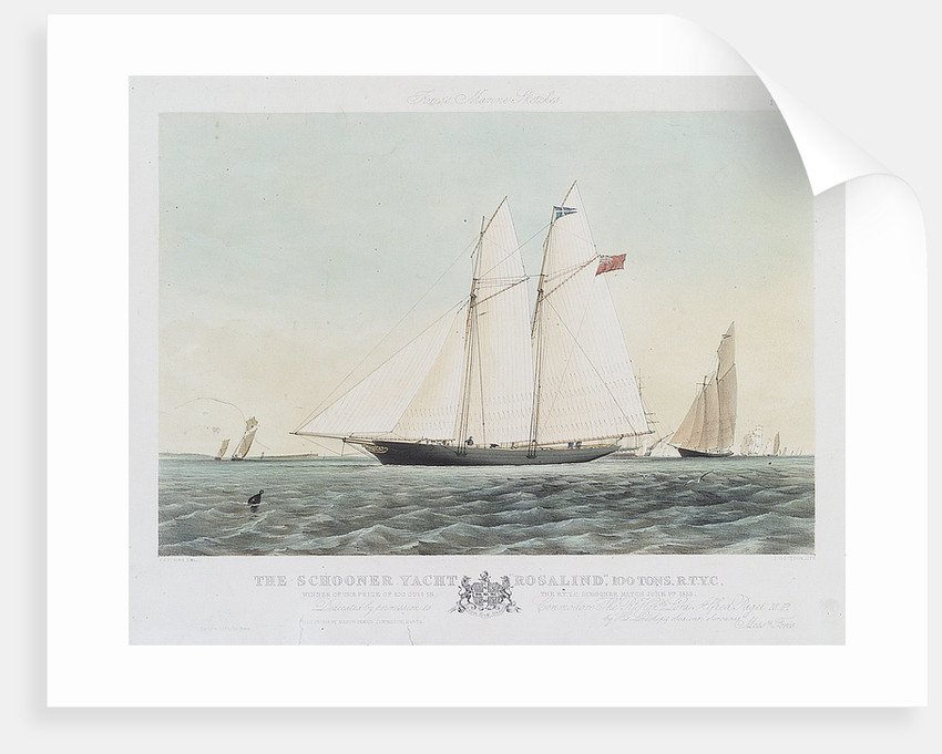 The schooner yacht 'Rosalind' by Thomas Sewell Robins