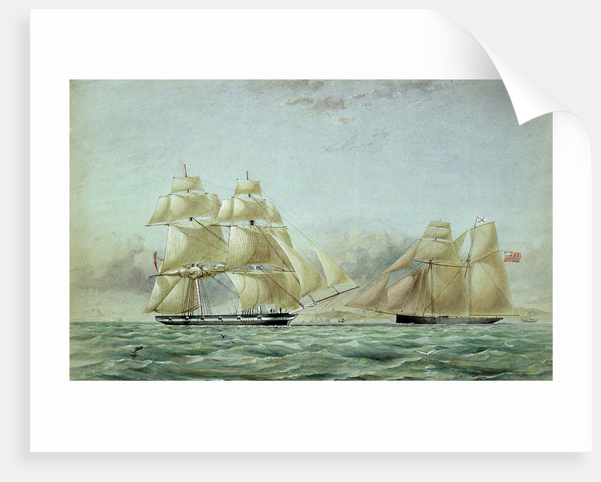 Sailing vessels 'Lyra' and 'Petrel' - opium ships by Thomas Goldsworth Dutton