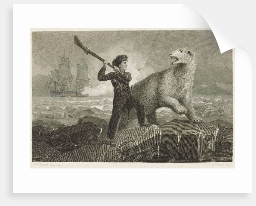 Nelson and the bear by Richard Westall