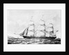 The Australian clipper 'White Star' by John R. Isaac