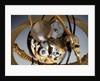 Winding wheels of celestial clockwork globe by Isaac Habrecht II