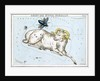 Constellation card, Urania's mirror, Aries and Musca borealis by Sidney Hall