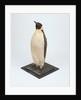 Stuffed emperor penguin by Dr. Edward Wilson