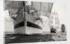 'Mir', 'Pelican' and 'Alex von Humboldt' by Richard Sibley