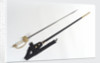 Chinese Maritime Customs small-sword by unknown