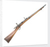 Hotchkiss Model 1878 rifle by Winchester's Repeating Arms
