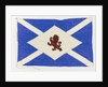 House flag, Scottish Tanker Co. Ltd by unknown