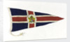 House flag, Canadian National Steamships by unknown