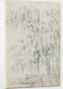 Study of a tree overhanging water at Merton (recto) by Thomas Baxter