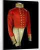 Coatee, Royal Marines uniform: pattern 1830 by unknown