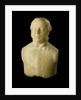 Bust of Dr William Ross (1823-1904), Assistant Surgeon, HMS 'Virago' by unknown