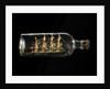 Ship model in a bottle by unknown