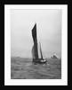 'Gloria' (Br, 1898) under sail by unknown