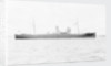 'Prestol' (Br, 1917) by unknown