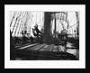Hauling on the brace at the main mast by Alan Villiers
