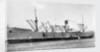 'Port Nicholson' (Br, 1919), under tow off Gravesend by unknown