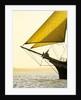 Mainmast brigantine 'Pelican of London' at Funchal 500 regatta, Falmouth 2008 by Richard Sibley