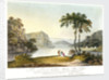 View of Markham Cove by Rufane Shawe Donkin