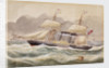 'La Plata', Royal Mail steamer, 1852 by unknown