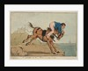 A Sailor on the Mane or a trip to Sea by William Heath