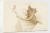 Study of the lower half of a human face, possibly a statue by Margaret Louisa Herschel