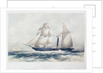 The Iron Steam Frigate 'Guadalupe' (1836) by George Hawkins