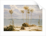 View of Sir Edward Pellew's Group, Northern Territory, December 1802 by William Westall