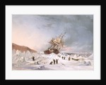 HMS 'Assistance' in the ice by Thomas Sewell Robins