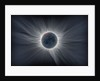 Sun Flower - Corona by Catalin Beldea; Alson Wong