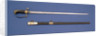 Stirrup hilted sword by Prosser