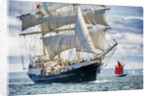 'Tenacious' participating in the parade of sail, Hartlepool Tall Ships Regatta 2010 by Richard Sibley