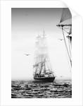 50th anniversary Tall Ships Race at Torbay, 2006 by Richard Sibley