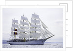 Polish full-rigged ship 'Dar Mlodziezy' underway at Port Rush for the first leg of the 2008 Liverpool Tall Ships Race to Maløy in Norway by Richard Sibley