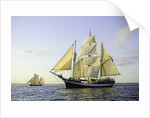 'Pelican of London' off Falmouth, during the start of the Funchal 500 Tall Ships regatta 2008 by Richard Sibley