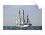 Norwegian full-rigged ship 'Christian Radich' bound for St Petersburg, during Gdynia Tall Ships Race 2009 by Richard Sibley