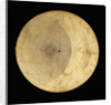 Astrolabe: plate for 50 by Erasmus Habermel