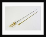 Small-sword which belonged to Admiral of the Fleet Sir George Cockburn by Richard Clarke & Son