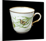 Cup used on RY 'Alberta' (1863) by Worcester Royal Porcelain Co.