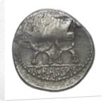 Denarius; reverse by P. Fourius Crassipes