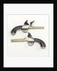 Flintlock pistols by J. Innes