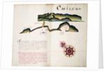 Chilca by William Hack